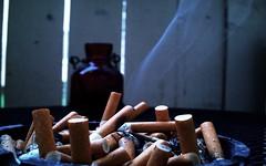 (lostocean) Tags: smoke cigarettes cigarettesmoke