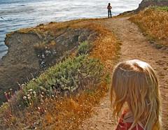 108 Sisters on the cliff, Pt. Lobos (yaxchibonam) Tags: california hana centralcoast ptlobos 2007 beautifulday yaxchibonam