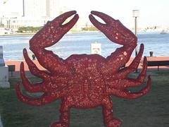 Baltimore_Crab043 (Puckfiend) Tags: harbor maryland crab baltimore