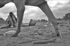 Scavengers Tale (Vivek M.) Tags: life city people urban work children garbage community women smoke bangalore disposal health environment waste refuse hazard landfill scavenger redux occupation ragpicker dumpyard kyalsanahalli