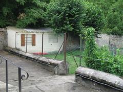 Le jardin privatif avec le cabanon (ce.bertrand) Tags: f3 toulouse rue rambouillet
