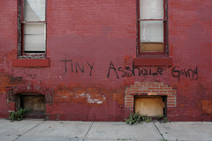 tiny asshole gang_1 web