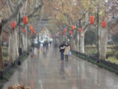 Love in the air (★yh) Tags: china street love hug couple valentine rainy romantic lamps cotcbestof2006