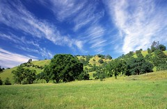 CA Coast Range: Views 1 (Ostrosky Photos) Tags: california county blue sky usa green nature grass clouds forest oakland spring nice sonoma relaxing peaceful hills napa oaks grasslands coastalrange coastrange excapture