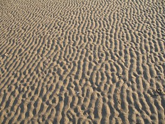 IMG_0077 (pellisuk) Tags: beach crosby anotherplace