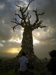 Bone Tree (MAKSTER) Tags: tree clouds burningman blackrockcity bones bone ponder awe duststorm hex greenman supershot bonetree burningman2007