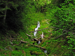 Little Ira Falls, Unnamed Creek, Snoqualmie Area