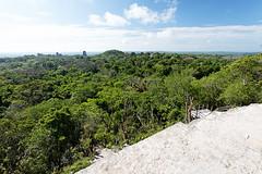 baudchon-baluchon-guatemala-tikal-35