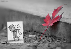 Something in Common (Ben Heine) Tags: park autumn light brussels wallpaper blur game macro cute art fall nature pencil paper season print creativity japanese robot miniature leaf focus friend scenery funny poem different technology friendship belgium sweet box character small manga magritte dessin sharp cardboard illusion ami fantasy tiny carton series tribute crayon conceptual hommage figurine copyrights papier amiti feuille bote selectivecolor cailloux lpiz enfance yots