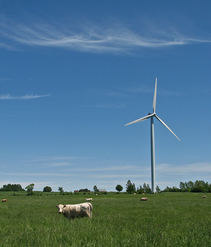 Turbine for Bessie (alternate title: And The Wind Cried Dairy)