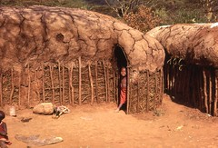 Maasai houses, Kenya (gbaku) Tags: africa houses roof cute wall architecture children village child native kenya african villages case architectural huts roofs afrika walls anthropologie masai maasai anthropology cases africain afrique ethnography ethnology africaine ethnologie afrikas