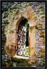 an old window of an old castle... (G.Hotz Photography (busy as a bee =)) Tags: castle austria fenster hard bregenz schloss burg vorarlberg ondarena