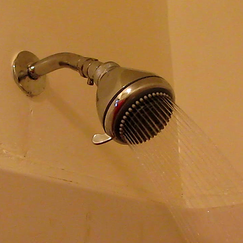What Causes Tiny Worms in the Shower Tiles? | Hunker
