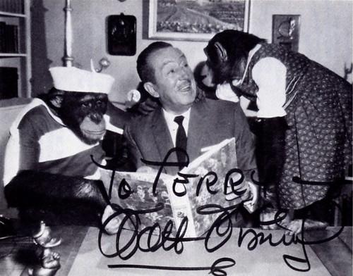 Walt Disney Autograph