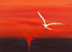 Seagull (nicholas marsh) Tags: sunset red fire acrylic seagull drama nicholasmarsh