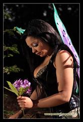 Midnight Faerie 2 (Mark O'Grady // Photography) Tags: flowers cute rose bristol wings woods fairy midnight isabelle leigh vivitar faerie nissin speedlite sirenia 285hv di866
