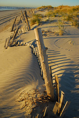 The Beach at Avalon (six28fifty) Tags: naturepoetry