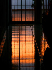 Reflection (anita gt) Tags: sunset reflection window atardecer ventana floor sigma finestra reflejo piso 55200mm orangepink creativephotographer diamondclassphotographer flickrdiamond thatsclassy anaranjadorosado