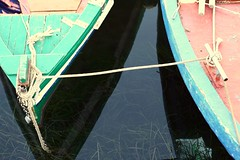 Legami...prua a prua (ita145117) Tags: verde boats barche anchor siracusa ortigia cima legno ancora bitte siciliy fishboats alghe prua legami fasciame portopiccolo pruacontroprua galloccia