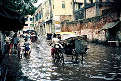 CALCUTTA - The Monsoon (BoazImages) Tags: life people india water rain weather asia streetphotography monsoon rickshaw floods documentry culcutta aplusphoto boazimaged lpweather