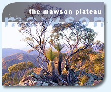 link to the mawson plateau slide show on flickr