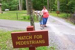 """Watch For Pedestrians (rcvernors) Tags: adam sign geotagged zoo wv westvirginia pedestrians frenchcreek county"""" rcvernors verdonna frenchcreekgamefarm """"upshur westvirginiastatewildlifecenter"""