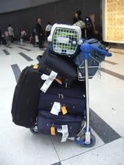 una vida en unas maletas