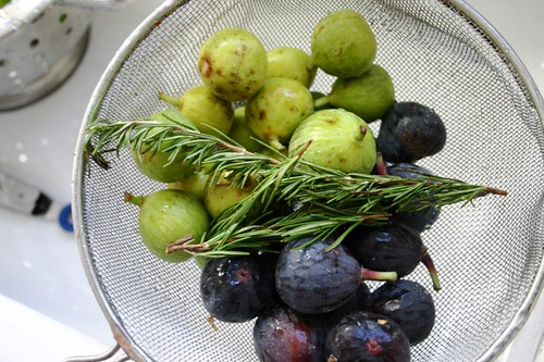 Figs and rosemary