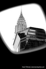New York city (2009) (David Tesinsky - Photographer) Tags: city newyorkcity usa white black mirror experiment highbuilding