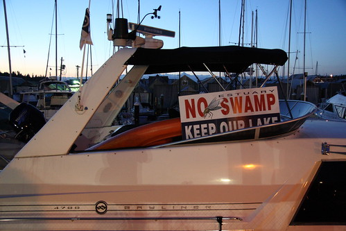 No Swamp! Go Estuary, Go!