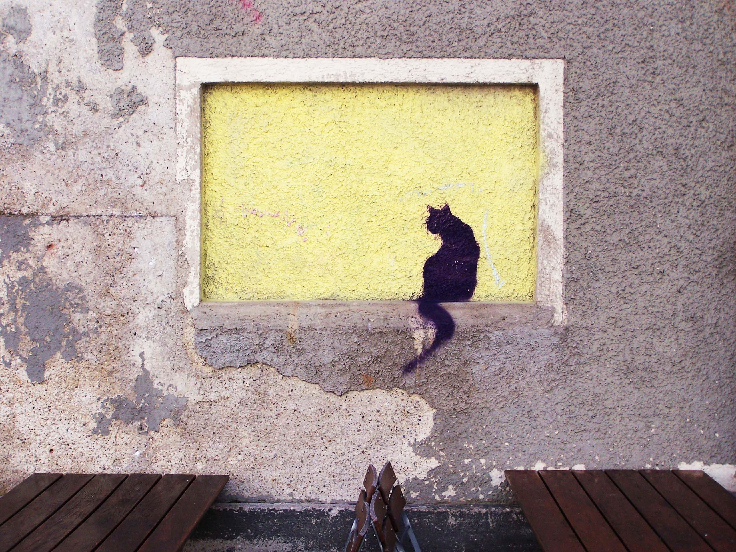Schwarze Katze Graffiti