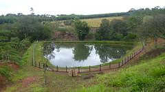 (alanpiresbr) Tags: minasgerais verde lago agua minas passarinho peixe sitio peixes arara araras aude plantao cardume muzambinho