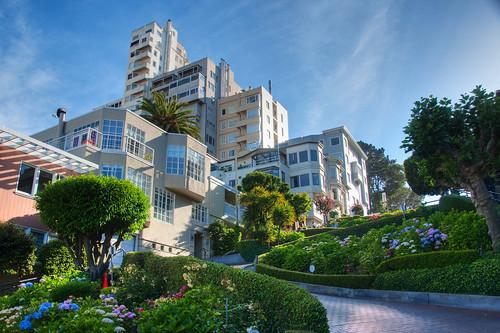 San Francisco 41