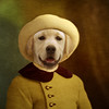 The favorite baby (Martine Roch) Tags: portrait dog cute smile hat animal vintage puppy costume kid funny labrador child adorable surreal photomontage pup awwww manray petitechose martineroch flypapertextures