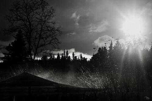 Morning Sun on Teal Valley