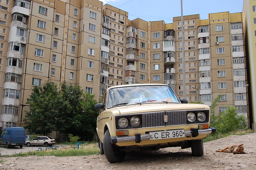 The Lada and The Dog