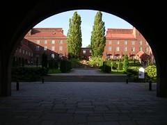 Universidad03
