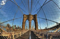 Trapped (A.G. Photographe) Tags: new york city nyc usa ny newyork france brooklyn america skyscraper us nikon manhattan unitedstatesofamerica cable rope brooklynbridge manhattanbridge eastriver nikkor amerika brooklin franais hdr lowermanhattan anto amricain xiii amrique 16mmfisheye d700 antoxiii hdr7raw