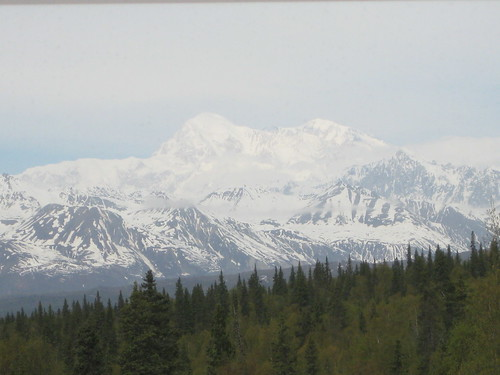 denali from train mountain
