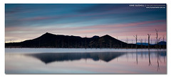 That the Beauty Lies in Everything You Do. ([ Kane ]) Tags: pink blue trees winter sky lake cold canon reflections print landscape dawn sticks soft pastel qld queensland kane tones 1740 waterpainting gledhill 16x7 kanegledhill 5dmarkii wwwhumanhabitscomau kanegledhillphotography