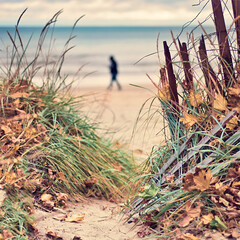 322/365: The view from here (pixelmama) Tags: november autumn beach fence sand autumnleaves lakemichigan explore lakeshore downlow gettyimages 2010 beachfence project365 evanstonillinois bokehpeople vintagetones 3652010 explorefrontpagecongratsmyfriend