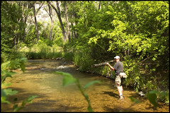 Utah Fly Fishing 07/07 (cor23) Tags: summer west river utah flyfishing trout coldwater tailwater