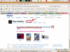 Flickr empty!!