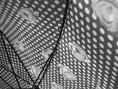 Umbrella - by Zeca Baronio