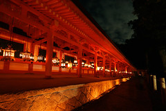The Lights of Nara (PacoAlcantara) Tags: longexposure japan bronze lights shrine wideangle explore lanterns lamps nara shinto worldheritage kasuga   shintoism canonefs1022mmf3545usm        abigfave