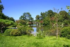 Seiwa-en (Cindy) Tags: seiwaen treesubject mobotorg goldstaraward