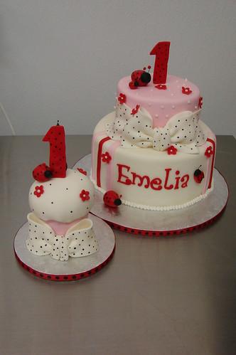 Emelia's Ladybug 1st Birthday Lady Bug theme Cakes