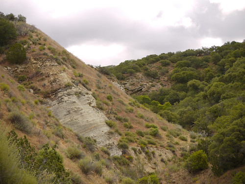 chaparral canyons