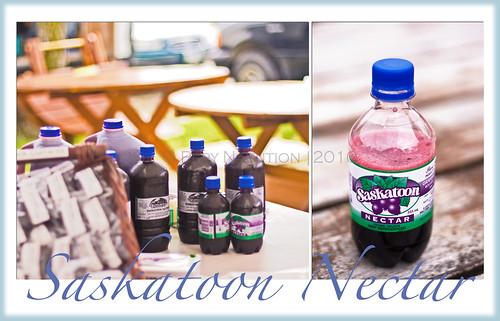 Saskatoon Nectar