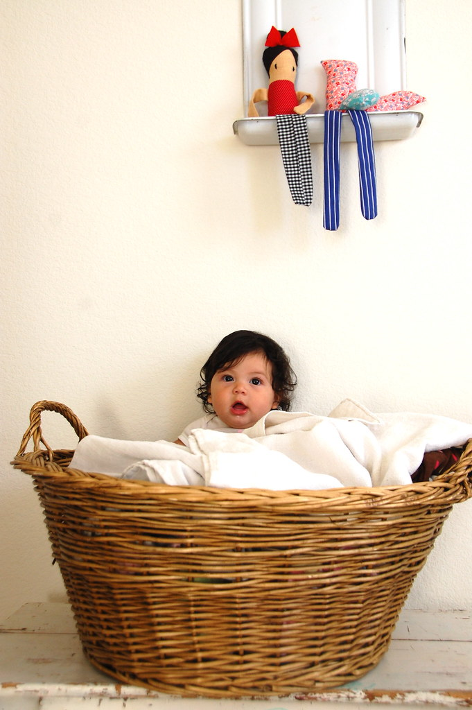 sitting in the laundry basket